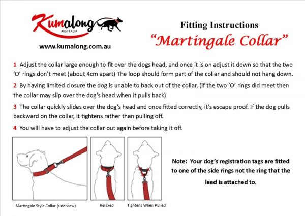 Instructions for fitting martingale collar