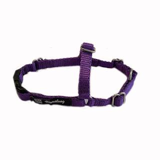 Harness-Mini-Purple
