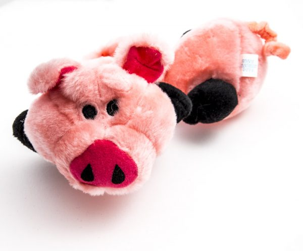 bungee pig