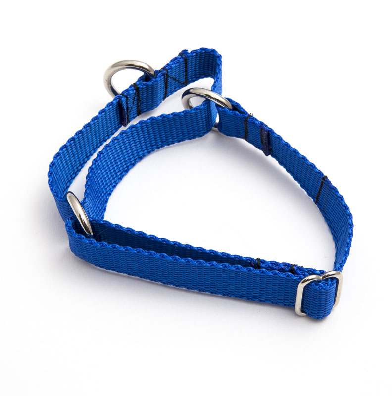 Martingale Collar (polypropylene)