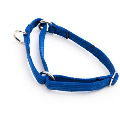 martingale collar - blue poly