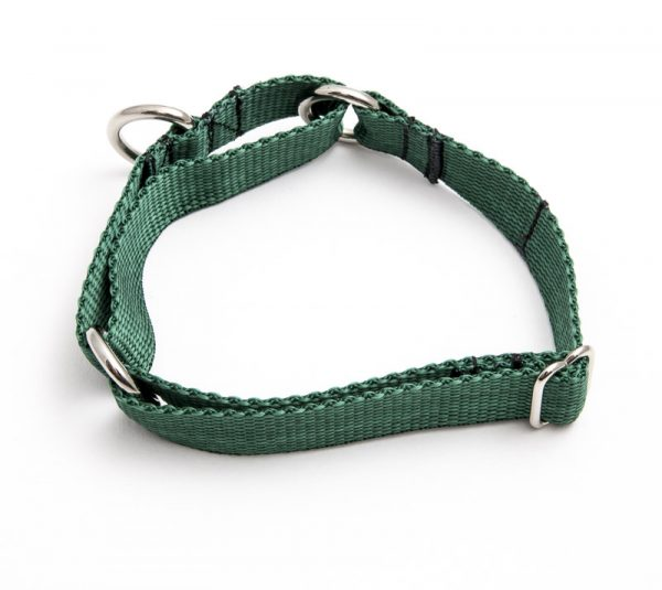 martingale collar - green poly