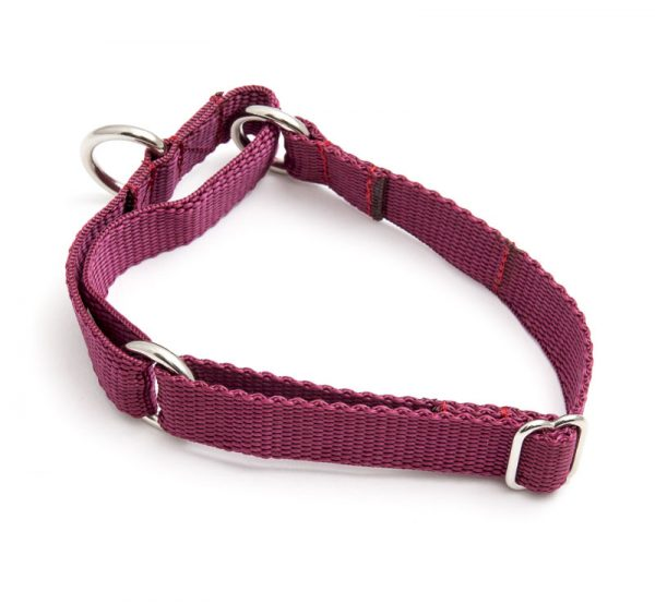 martingale collar - maroon poly