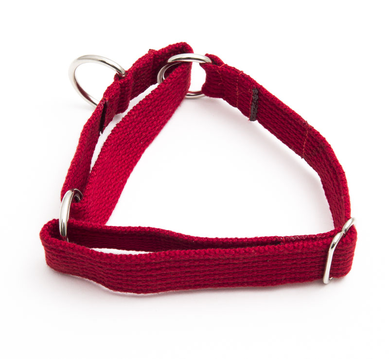 Martingale Collar (spun polyester)