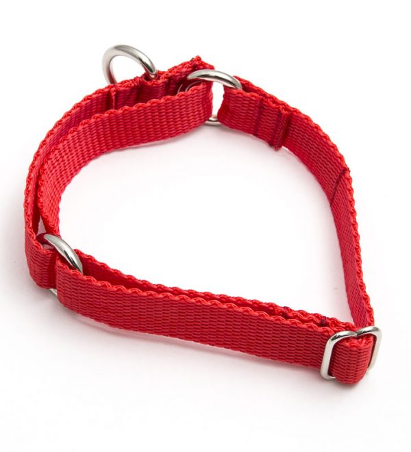 martingale collar - red poly