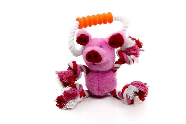 tippys toys pig