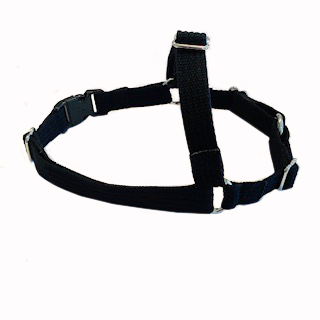front-harness-petite-20mm