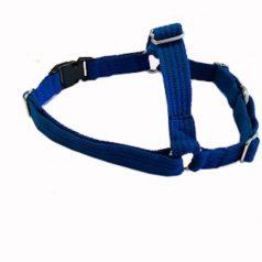 harness-blue-large