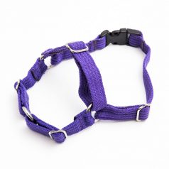 x-small harness purple