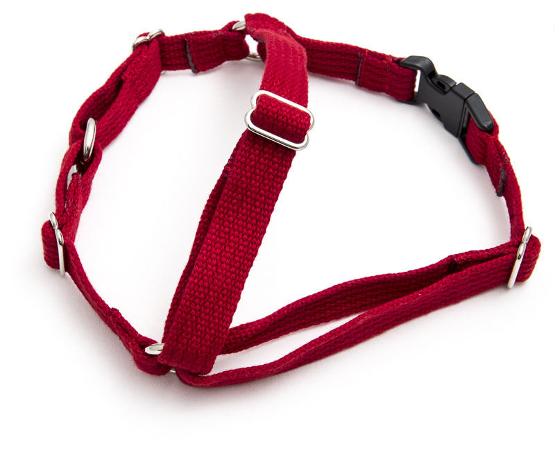 X-large harness red