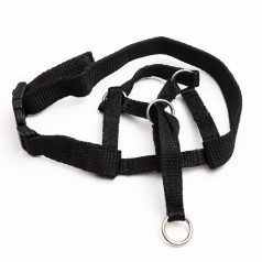 head halter black