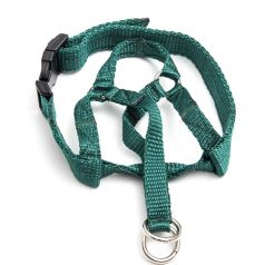 head halter green