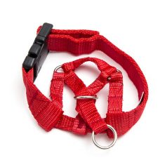 head halter red